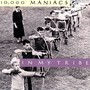 In My Tribe - 10.000 Maniacs