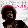 Stone Free - Tribute to Jimi Hendrix