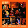 From The Muddy Banks Of The Wishkah [Live] - Nirvana