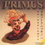 Rhinoplasty - Primus