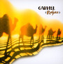 Rajaz - Camel