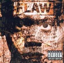 Through The Eyes - Flaw