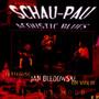 In The Mood - Schau-Pau Acoustic Blues