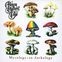 Mycology: An Anthology - The Allman Brothers Band