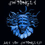 Are You Shpongled? - Shpongle