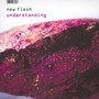 Understanding - New Flesh