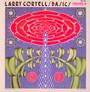 Basics - Larry Coryell