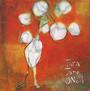 In The Sun Lines - Tara Jane O'Neil