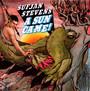 A Sun Came - Sufjan Stevens