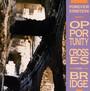 Opportunity Crosses Bridg - Forever Einstein