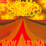 Raw Sienna - Savoy Brown