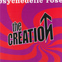 Psychedelic Rose - The Creation