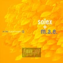 In Thye Fishtank 13 - Solex + M.A.E.