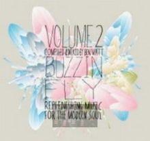 Buzzin' Fly V.2 - Ben Watt
