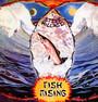 Fish Rising - Steve Hillage