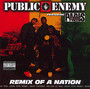 Remix Of A Nation - Public Enemy