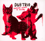 Another Sound Is Dying - Dub Trio