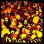 Far From The Sun (Digipak) - Siena Root