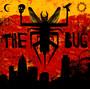 London Zoo - Bug