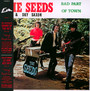 Bad Part Of Town - The Seeds