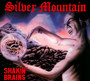 Shakin'brains, (1st) - Silver Mountain