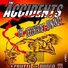 Beechcraft Bonanza - Accidents
