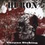 Cheyene Stoking - Huron