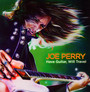 Have Guitar Will Travel - Joe Perry  -Project-