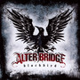 Blackbird - Alter Bridge