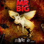 What If - Mr. Big