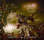 Relentless, Reckless Forever - Children Of Bodom