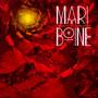 Aiggi Askkis: An Introduction To Mari Boine - Mari Boine