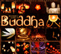 Beginner's Guide To Buddha - Beginner's Guide To ...