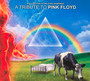 Collection Of Delicate - Tribute to Pink Floyd