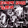 A Holocaust In Your Head - Extreme Noise Terror