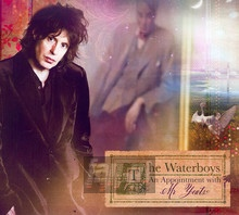 An Appointment With Mr. Yeats - The Waterboys