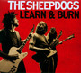 Learn & Burn - Sheepdogs
