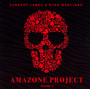 Amazone Project III - V/A