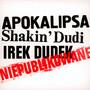 Niepublikowane - Irek Dudek / Shakin' Dudi