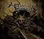 The Call - Angelus Apatrida