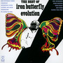 Best Of Iron Butterfly Evolution - Iron Butterfly