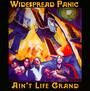Ain't Life Grand - Widespread Panic