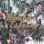 Elegancia Tropical - Bomba Estereo