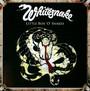 Little Box 'o' Snakes  - The Sunburst Years 1978 - 1982 - Whitesnake