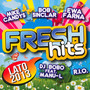 Fresh Hits 2013 Lato - Fresh Hits