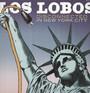 Disconnected In New York - Los Lobos
