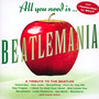 All You Need Is Beatlemania - Tribute to The Beatles
