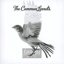 Common Linnets - Common Linnets