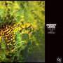 Rite Of Spring - Hubert Laws