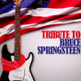 Bruce Springsteen-Tribute - V/A